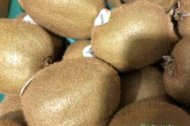 actinidia deliciosa Hawart (Kiwi vrouw)